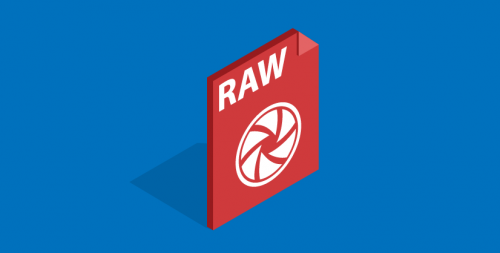 5 Best Backups for RAW Photos (Fantastic List for 2016)