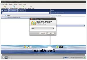 TeamDrive - Invite Members - Choose Space